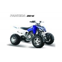 2.21. Квадроциклы 250-300 cc.
