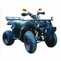 motoserp.ru - 200cc Квадроцикл AVANTIS HUNTER 200 LUX (Хантер 200 Люкс) утилит 2х4, 4тактн.; 200cc; электростарт, вариатор с реверс.(шт.) (зак). - МотоВелоЦентр г.Серпухов