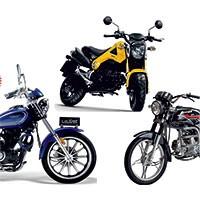 1.1.6.7. Классические мотоциклы и чопперы других производителей.