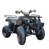 motoserp.ru - 200cc Квадроцикл AVANTIS HUNTER 200 Lite (Хантер 200) утилит 2х4, 4тактн.; 200cc; электростарт, вариатор с реверс.(шт.) (зак). - МотоВелоЦентр г.Серпухов