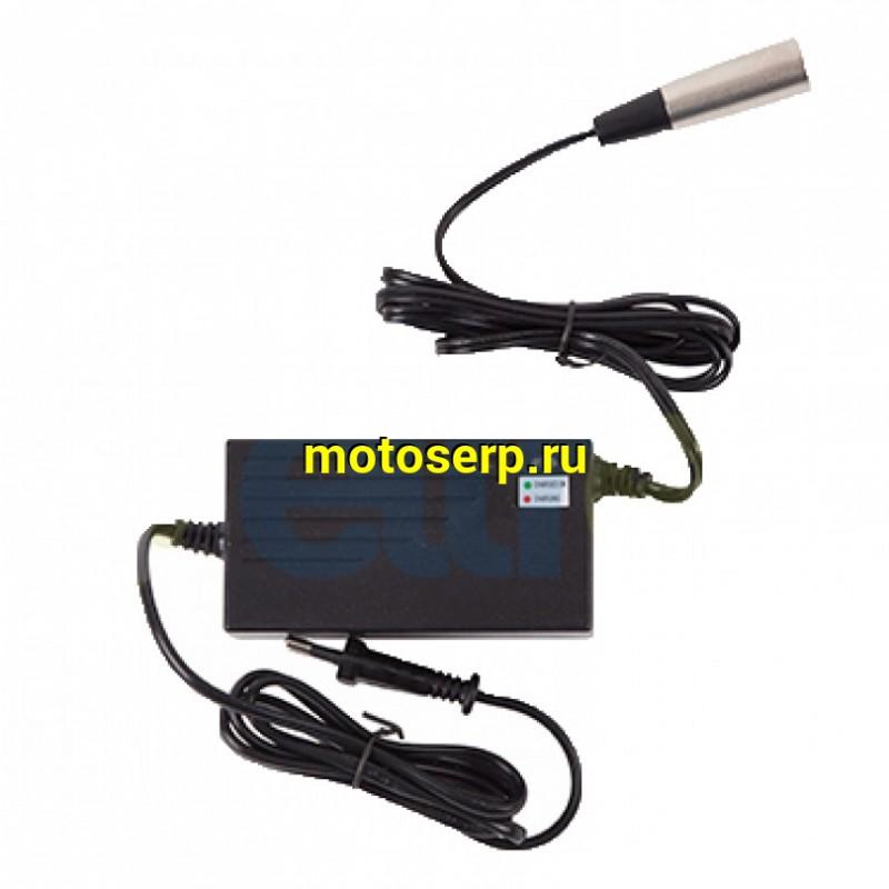Купить  Зарядное устройство 36V для электровелосипеда (шт) (Бел купить с доставкой по Москве и России, цена, технические характеристики, комплектация - motoserp.ru
