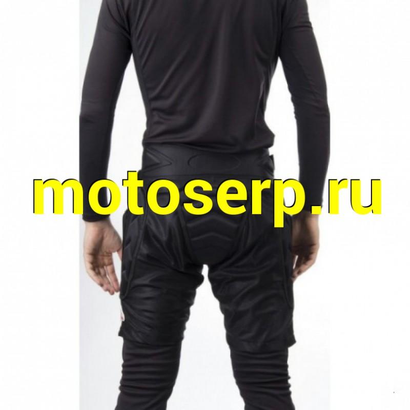 Купить  Шорты защитные VEGA NM-629  L (SM 020057-696-3020 купить с доставкой по Москве и России, цена, технические характеристики, комплектация - motoserp.ru
