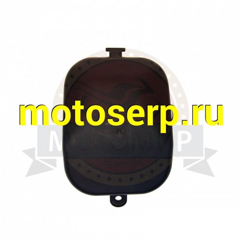 Купить  Крышка отсека доступа к карбюратору FT50QT-3, ACTIV NOVO, DEXTER (MM 14052 купить с доставкой по Москве и России, цена, технические характеристики, комплектация - motoserp.ru